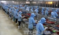 Vietnam's economy remains stable amidst global slowdown