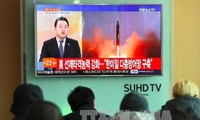 Stratfor warns of North Korea's nuclear capability