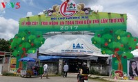 Fruit festival opens in Ben Tre province