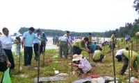 Localidades vietnamitas saludan el Día Mundial del Medio Ambiente