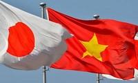 Vietnam y Japón por una cooperación económica más fructífera