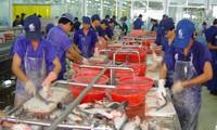 WWF-Fischratgeber: Pangasius aus Vietnam im Prozess der Zertifizierung