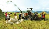 Umstrukturierung der Landwirtschaft im Jahr 2013