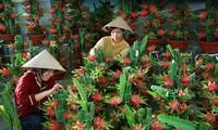 Weltbank hebt die Prognose über das Wirtschaftswachstum Vietnams