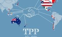 TPP- ein Handelsvorbild im 21. Jahrhundert