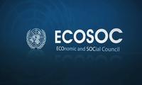 Mit hoher Stimmzahl wird Vietnam zum Mitglied des Wirtschafts- und Sozialrats der UNO gewählt