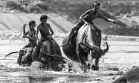 """""""Fotografenfreunden"""" stellen """"Schönes Vietnam"""" in Australien vor"""