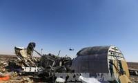 Flugabsturz in Ägypten: verdächtige Gruppen bestimmt