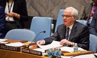 Meinungsverschiedenheiten des UN-Sicherheitsrats bei der Lösung der Syrien-Krise