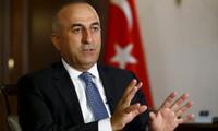 Türkei ruft zu Bodenoffensive gegen den IS in Syrien auf