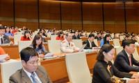Parlament diskutiert über Ergänzung des Strafgesetzbuches 2015