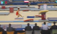 Zahlreiche Goldmedaillen für vietnamesische Sportler bei internationalen Wettbewerben