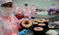 Exportvolumen der land-, forstwirtschaftlichen Produkte Vietnams beträgt 13,7 Milliarden US-Dollar