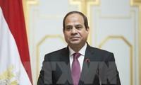 Ägyptischer Präsident ratifiziert Gesetz zur Gründung der Nationalwahlkommission