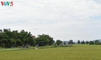 Entdeckung der klassischen Architechtur im Dorf Thanh Thuy Chanh