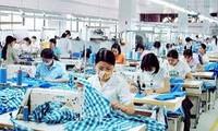 Vietnam will 2012 Textilwaren im Wert von 15 Milliarden US-Dollar exportieren