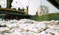 Export vietnamesischer Waren in Länder im Nahen Osten und in Nordafrika
