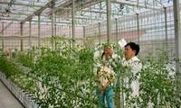 Anlockung von Investitionskapital in Landwirtschaft