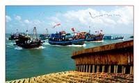 Meereswirtschaftsentwicklung in Ganh Hao