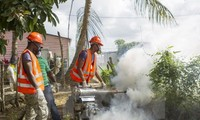 Zika in Lateinamerika: Gesundheitsminister treffen sich in Montevideo