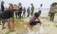 Erklärung des Premierministers über Massenserben von Meeresfrüchten an der Küste