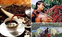Tag des vietnamesischen Kaffees