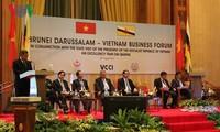 Staatspräsident Tran Dai Quang nimmt an Forum der Unternehmen aus Vietnam und Brunei teil