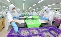 Export von Produkten der Fischerei profitiert von Freihandel zwischen Vietnam und EAEU