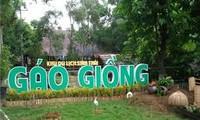 Gao Giong, das attraktive Öko-Tourismusgebiet in Dong Thap Muoi