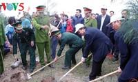 Vizepremierminister Truong Hoa Binh nimmt an Fest zum Anpflanzen von Bäumen teil