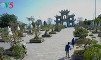 Halbinsel Son Tra - eine exotische Landschaft