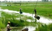 10 เหตุการณ์ในฟอรั่มความร่วมมือเศรษฐกิจเขตที่ราบลุ่มแม่น้ำโขง 2013