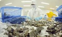 สหรัฐรับรองกุ้งที่นำเข้าจากเวียดนามไม่ได้ขายุทุ่มตลาด