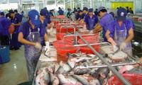 สร้างสรรค์ระเบียบการส่งออกปลาสวายแปรรูปผ่านศูนย์จัดซื้อสินค้า