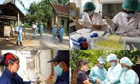 เวียดนามพร้อมที่จะรับมือกับโรคระบาดไข้หวัดนกสายพันธุ์ใหม่ H7N9