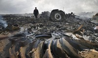 ท่าทีของประชาคมโลกเกี่ยวกับเหตุเครื่องบินMH17ตก เวียดนามเสนอให้เปิดการสอบสวนอย่างรวดเร็ว