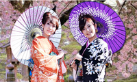 งานวันวัฒนธรรมญี่ปุ่นในจังหวัดแทงฮว้า