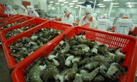 ภาษีต่อต้านการขายทุ่มตลาดต่อกุ้งนำเข้าจากเวียดนามลดลงอย่างเข้มแข็ง