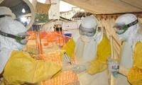 คิวบาประกาศเสร็จสิ้นหน้าที่ระหว่างประเทศในการต่อต้านการระบาดของอีโบล่าในแอฟริกา