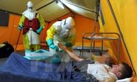 อิตาลียืนยันว่ามีพยาบาลติดเชื้อไวรัสอีโบล่า