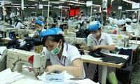 ขยายความร่วมมือระหว่างสหภาพแรงงานเวียดนามกับสหภาพแรงงานนอร์เวย์