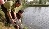 เดนมาร์กจะให้การช่วยเหลือเวียดนามอนุรักษ์ความหลากหลายทางชีวภาพต่อไป