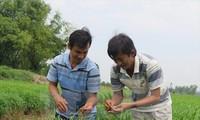 เวียดนามเป็นเจ้าภาพจัดการประชุมรัฐมนตรีดูแลสหกรณ์ย่านเอเชียแปซิฟิก
