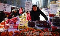 เปิดเส้นทางขนส่งผลไม้ทางทะเลระหว่างอาเซียนกับจีน