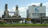 ซีพีวี-รูปแบบการผลิตที่ประสบความสำเร็จในเวียดนาม