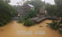 สาธารณรัฐเกาหลีและสหรัฐให้การช่วยเหลือเวียดนามแก้ไขผลเสียหายจากพายุดอมเรย