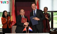 Netherlands considers Vietnam important partner in Southeast Asia