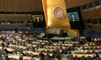 Vietnam calls for comprehensive UN reform
