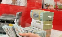 Vietnam's foreign reserves reach record high