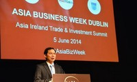 Deputy Foreign Minister Bui Thanh Son visits Ireland